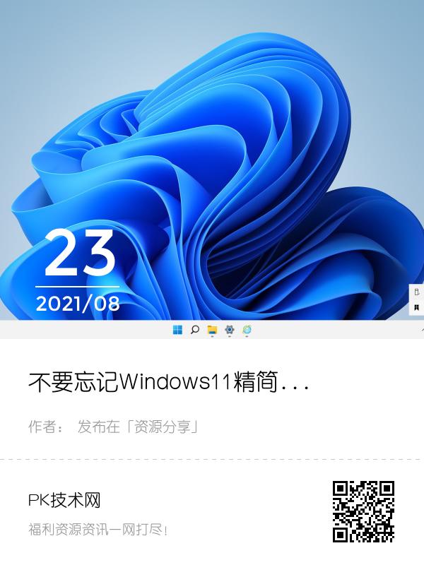 不要忘记Windows11精简版(22000.132)